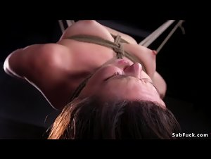 Brunette in upside down suspension tormented